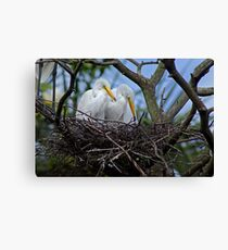 Mom's Watching Canvas Print