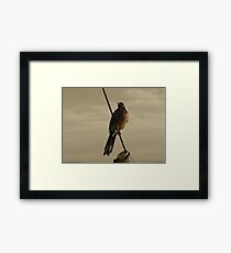 mariner proud Framed Print