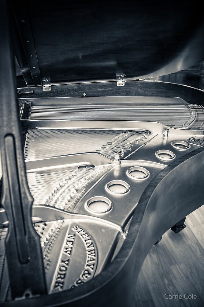 Steinway by Carrie Cole