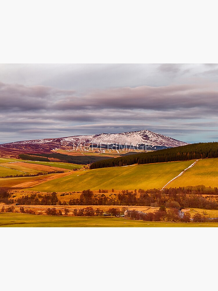 BEN RINNES THE THAW by JASPERIMAGE