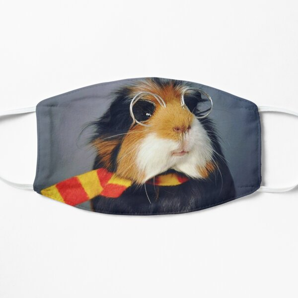 Guinea Pig – Cavy Collection – Model 24 Flat Mask