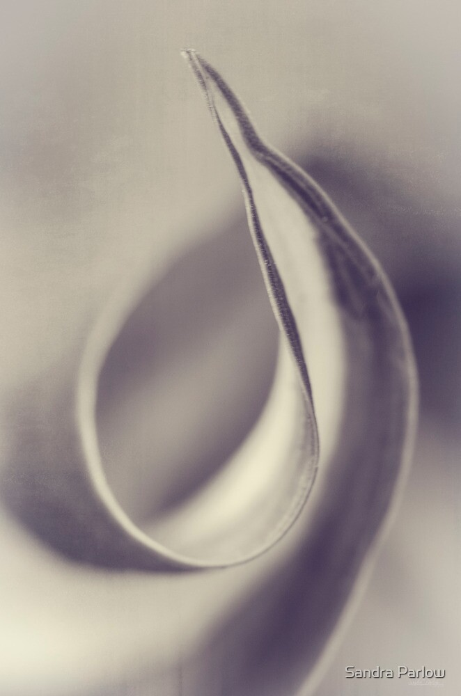 Curl Myself Around You by Sandra Parlow