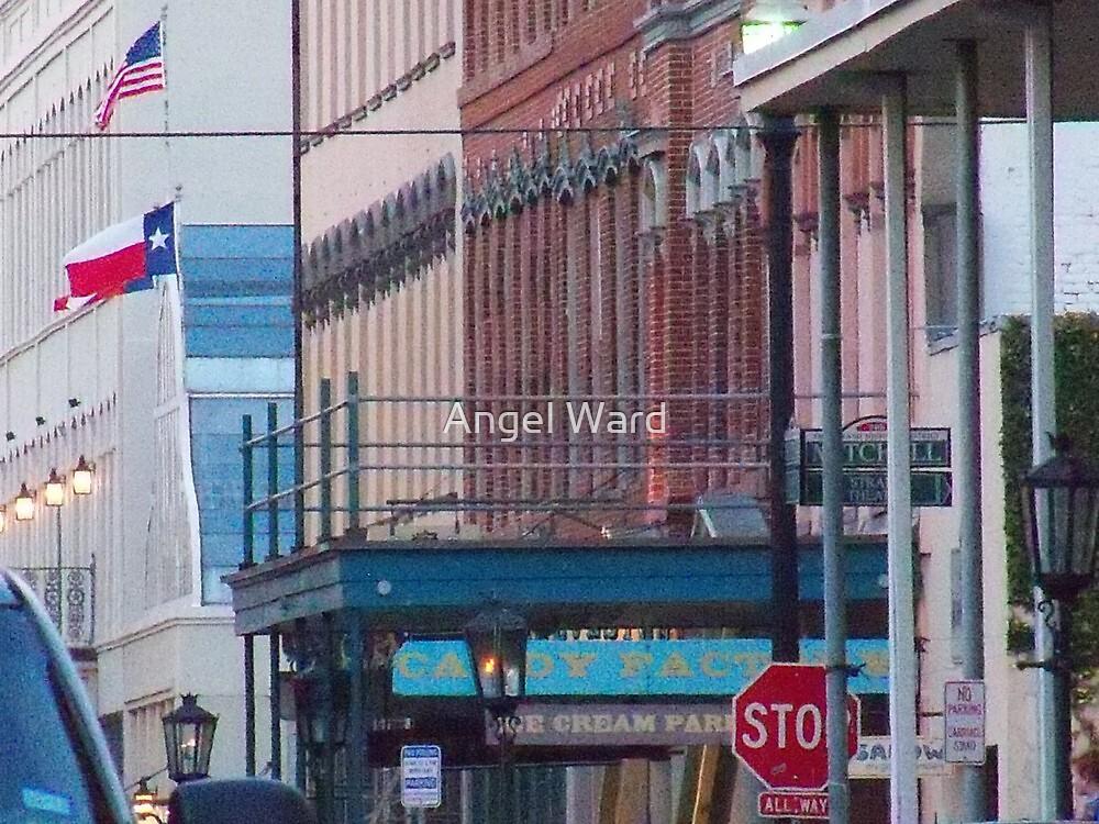 The Historic Strand Street, Galveston island by Angel Ward