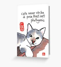 Photogenic Cat Greeting Card