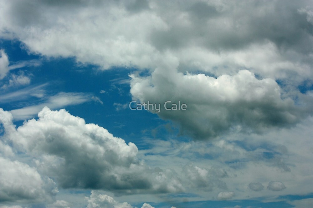 3-D Clouds by Cathy Cale