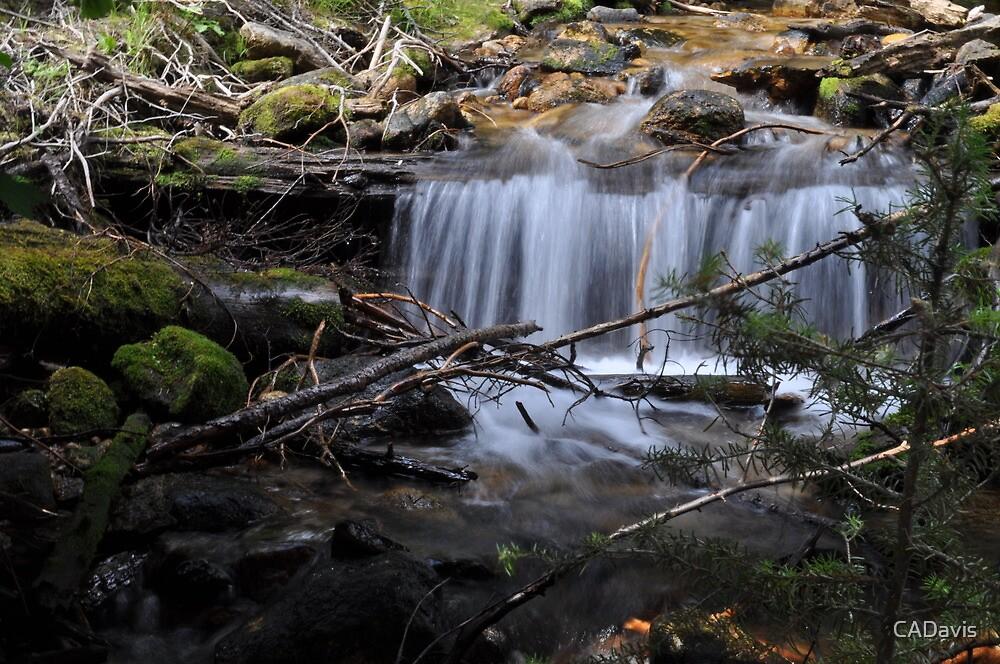 Cascading Water by CADavis