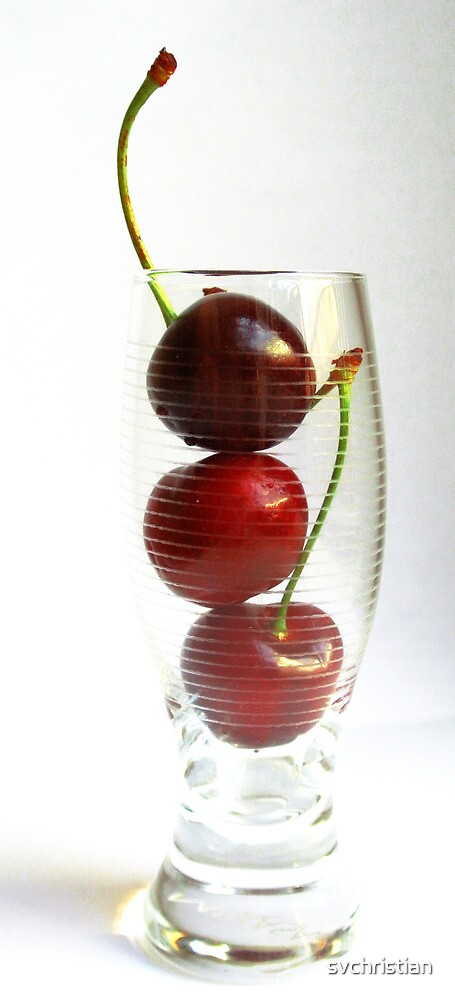 Cherry Glass by svchristian