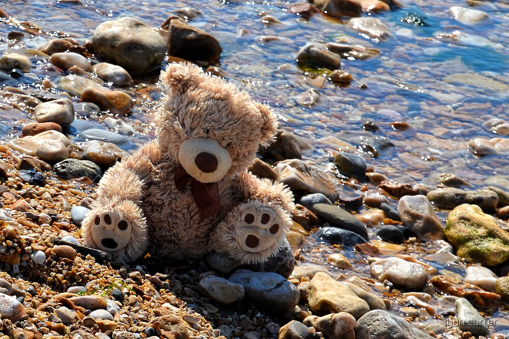 A Day At The Seaside For Ted by lynn carter