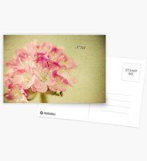 """""""Textured Flower"""" Postcards"""
