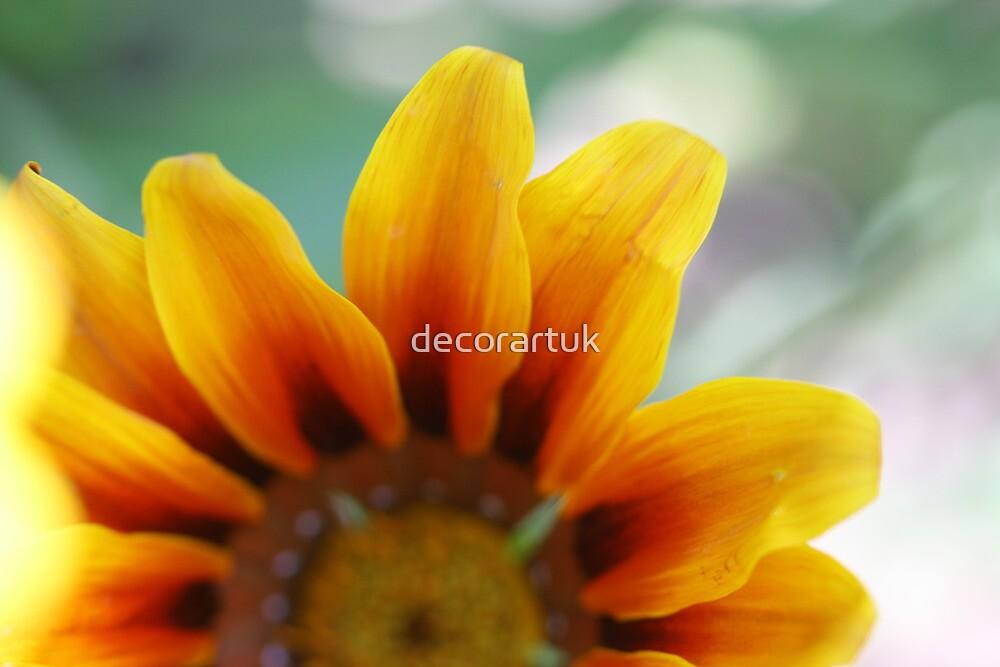 Miss Summer by decorartuk