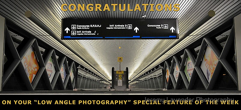 Special Feature Of The Week - Banner by Jeremy Lavender Photography
