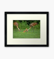 A Beautiful Family ~ Framed Print
