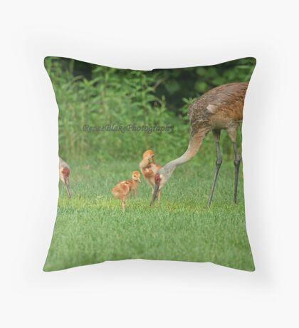 A Beautiful Family ~ Throw Pillow