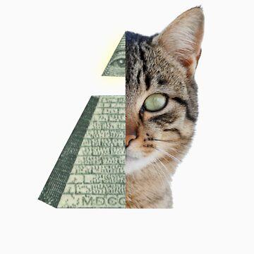 Illuminati Cat by lumb