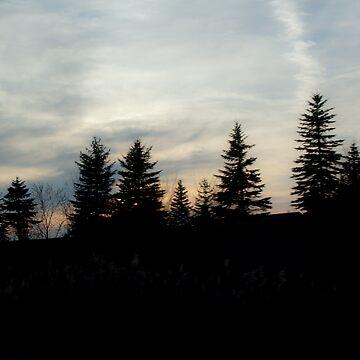 Tree Line  by Woodsmen