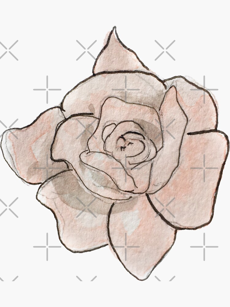 Pink Rose Illustration in Watercolor by WitchofWhimsy