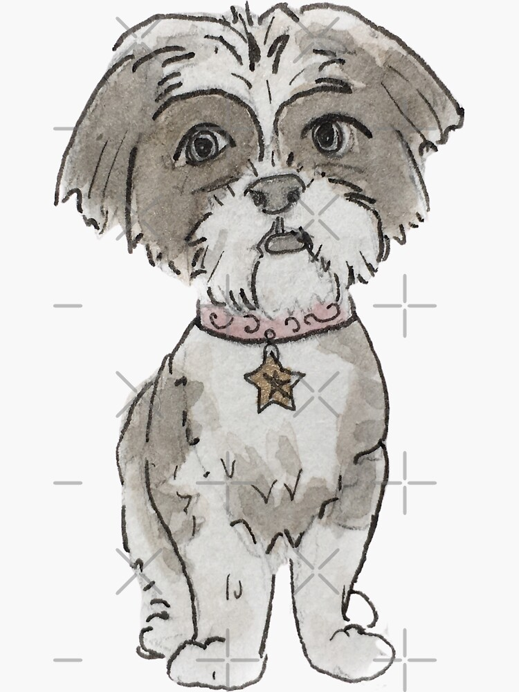 Small Black & White Dog with Star Collar Illustration in Watercolor by WitchofWhimsy