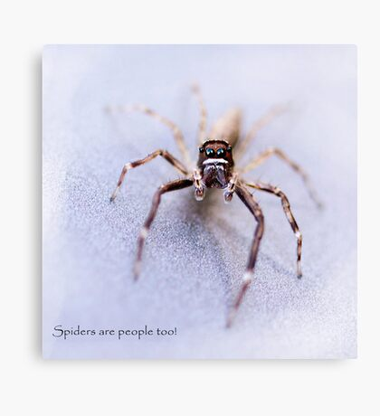 Spiders are People Too! Canvas Print