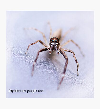 Spiders are People Too! Photographic Print