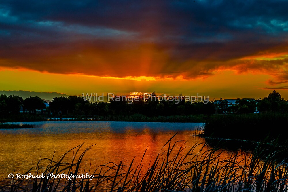 Cabootlure Sunset  by Wild Range Photography