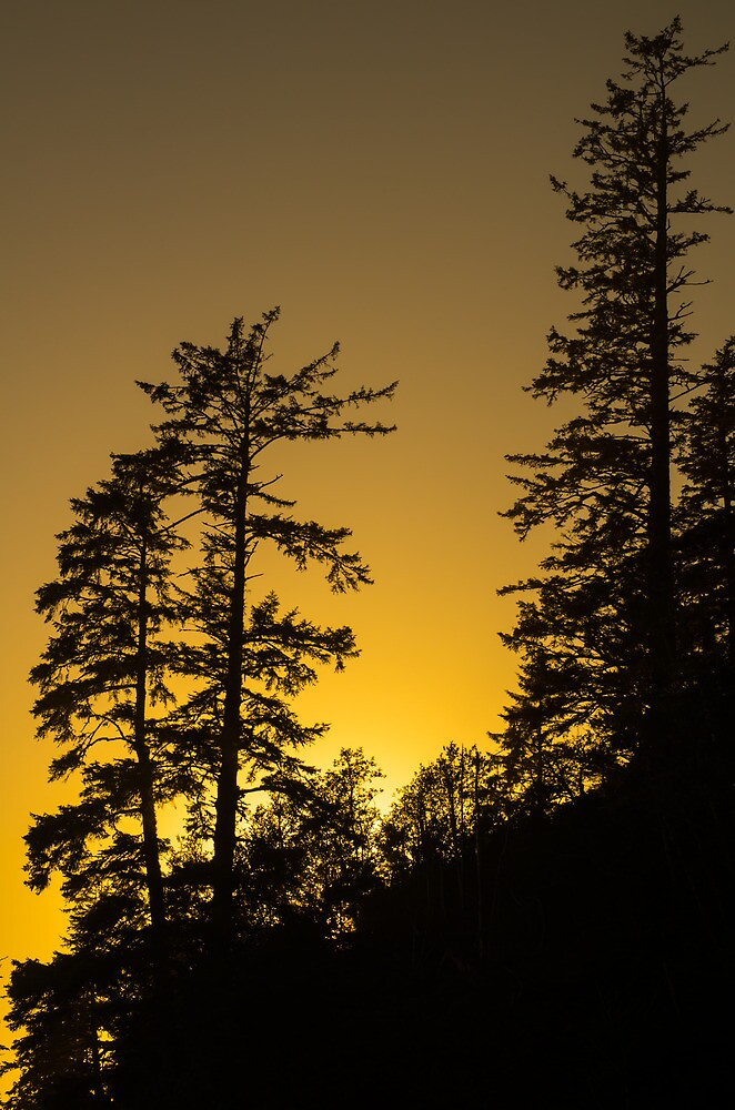 Tsusiat Sunset II - West Coast Trail, Vancouver Island, Canada by Phil McComiskey