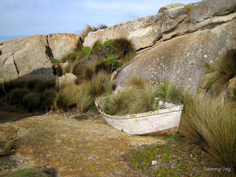 Ship Wreck, Three Hummock Island by Sammy-Joy