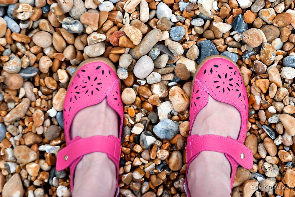 The Pink Shoes by Sue Knowles