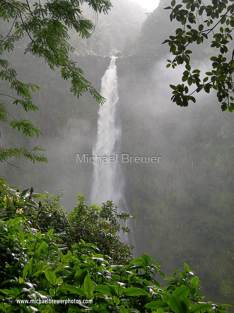 Akaka Falls by Michael Brewer