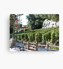 Vineyard California Canvas Print