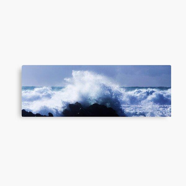 Waves 2 Canvas Print