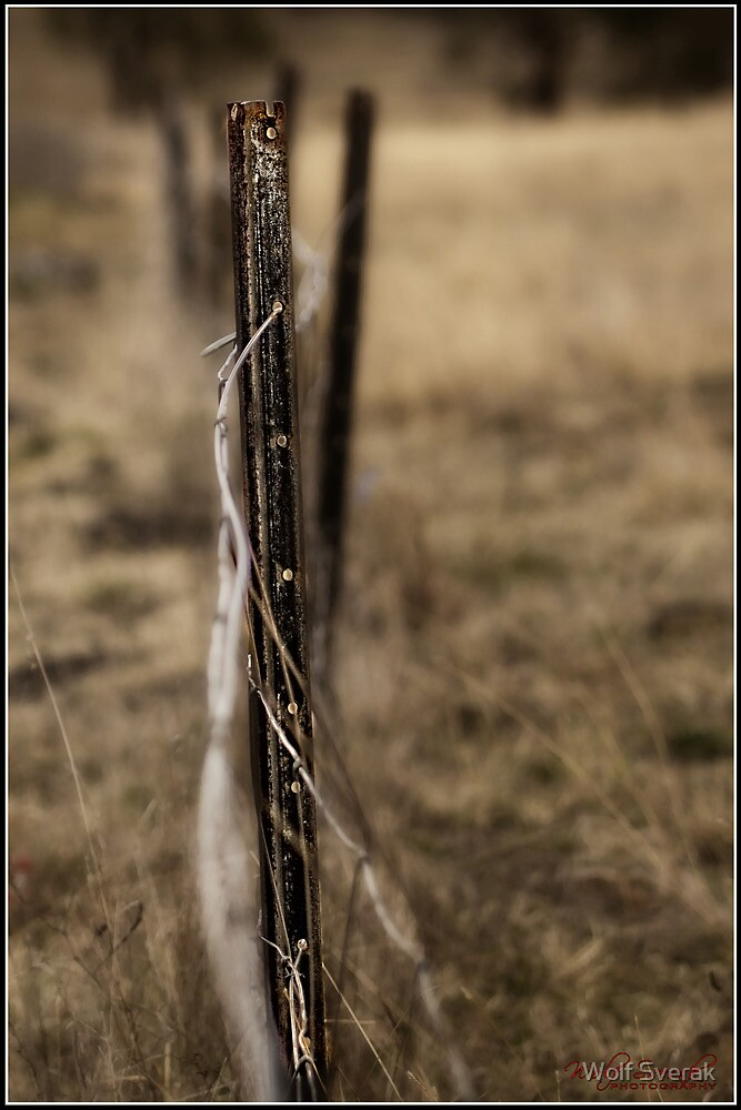 Fence (at the Pinnacle in Canberra/ACT/Australia by Wolf Sverak