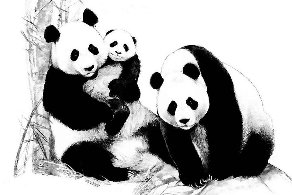Giant Panda (Ailuropoda melanoleuca) (Panda family) by Azurearte