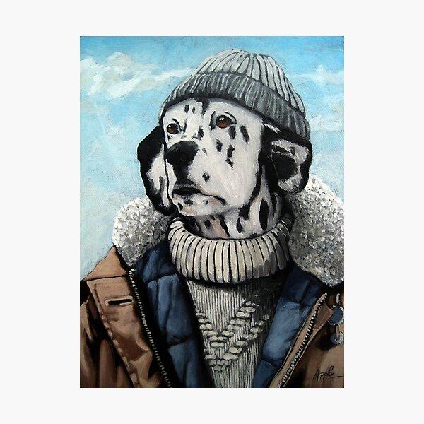MAN OF THE SEA - Dalmatian dog portrait  Photographic Print