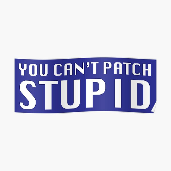 You Can't Patch Stupid Poster
