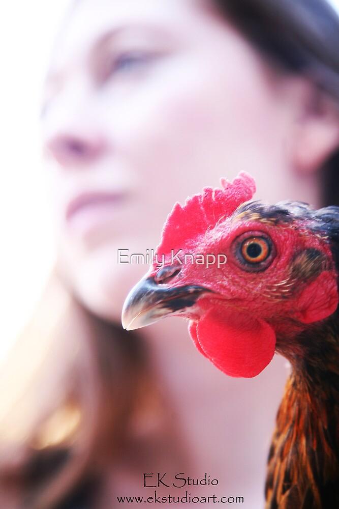 Chicken by Emily Knapp