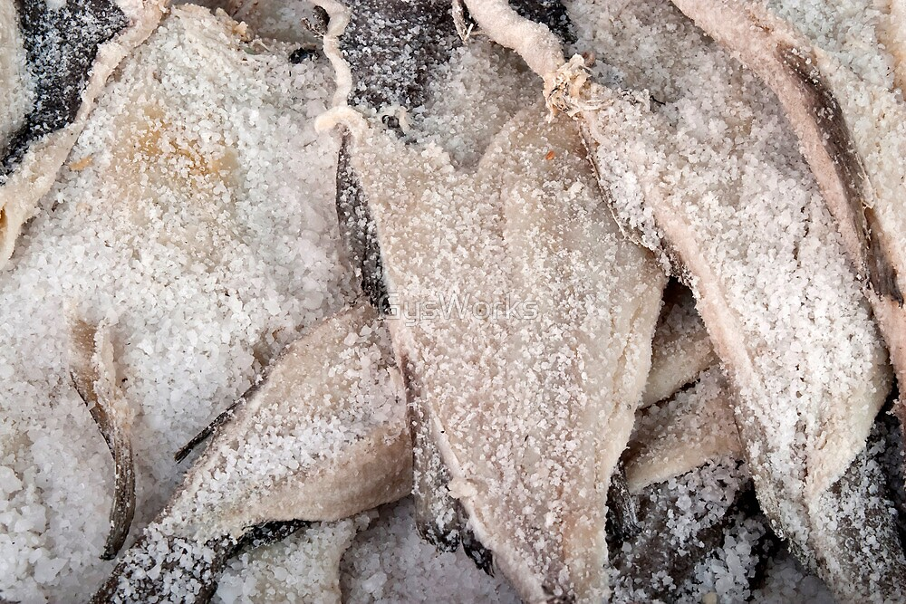 Salted Cod by GysWorks