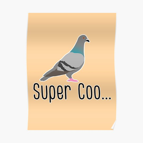 super coo funny pigeon pun Poster