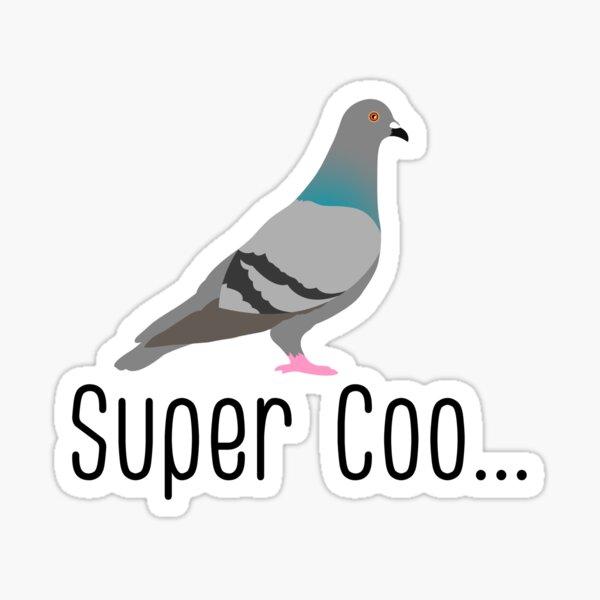 super coo funny pigeon pun Sticker