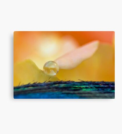 Angel of the Dawn Canvas Print