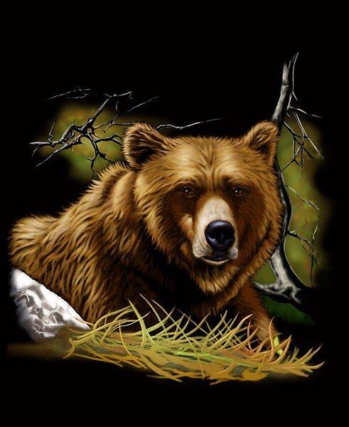peaceful bear by cesarazcona