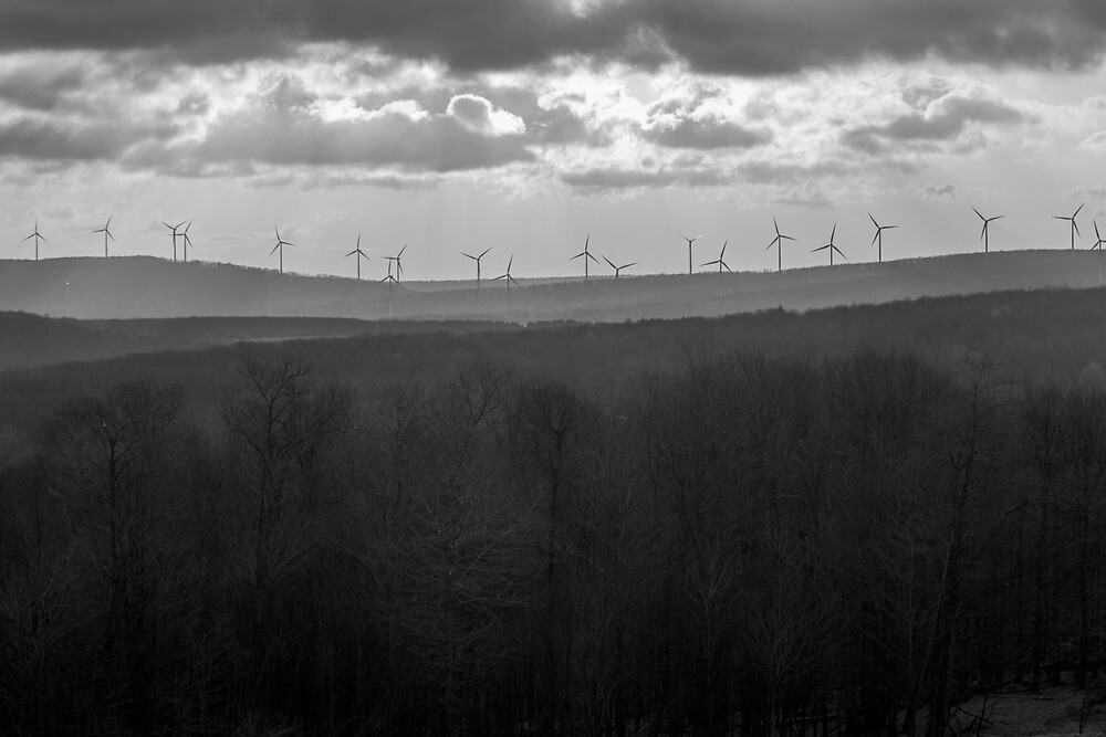 Windmills in the Mist by Dominic Perry
