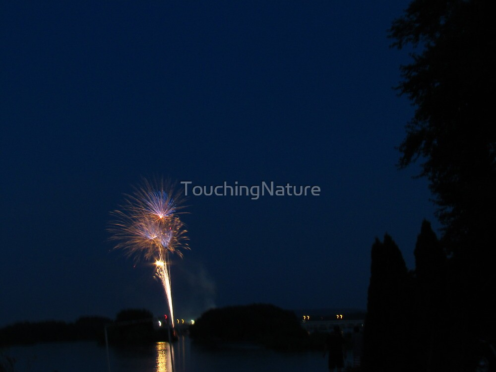 Fireworks Over The Capital City by TouchingNature