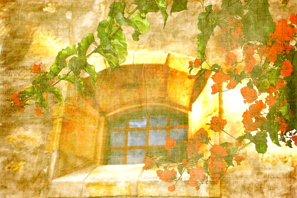 Adobe Window by korinneleigh