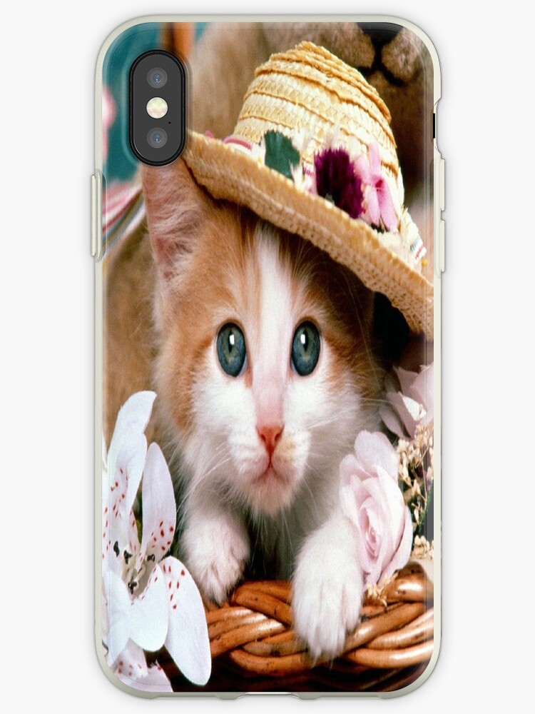Fancy Cat by MohsinArain