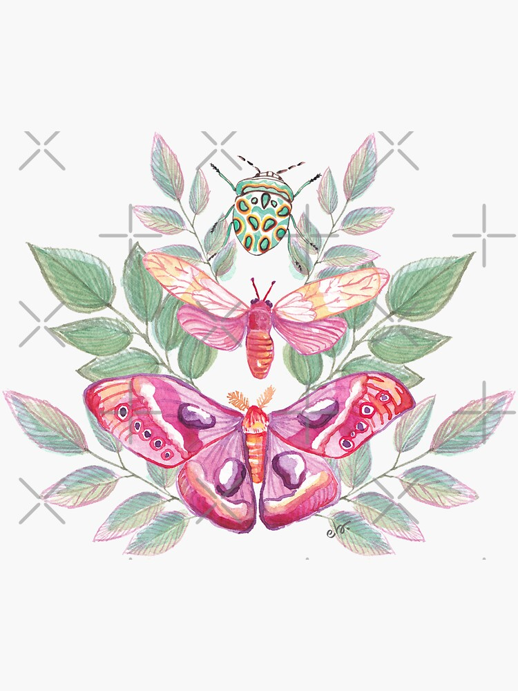 Butterflies and Beetle Magical trio pink & turquoise_watercolour by ebozzastudio