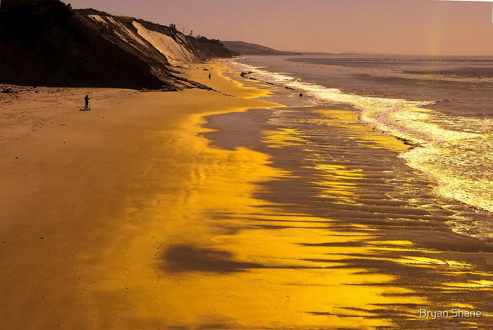 Golden Beach Sunrise by Bryan Shane
