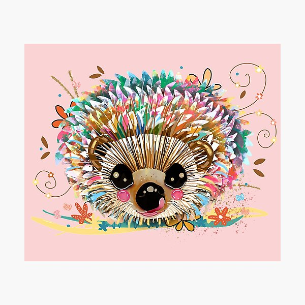 Rainbow Hedgehog Photographic Print