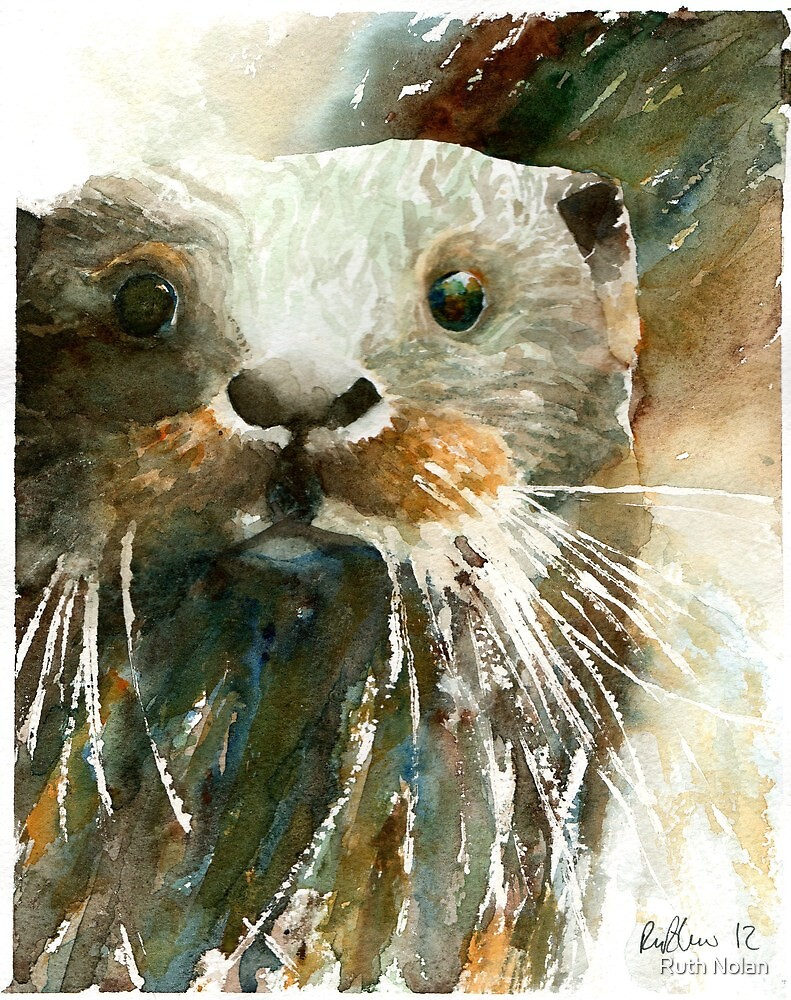Otter by Ruth Nolan