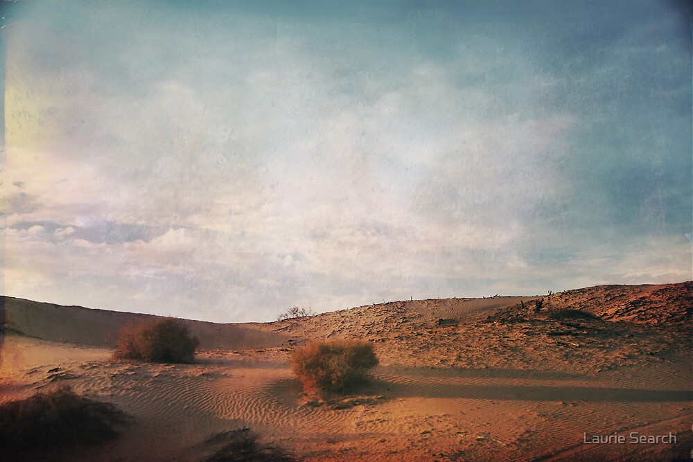 As the Sand Shifts So Do I by Laurie Search