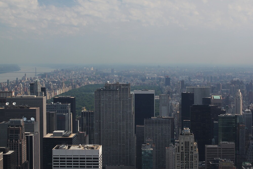 Central Park from up High by Dominic Perry